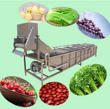Blueberry spice garlic onion beans raisin cleaning washing equipment