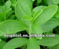 High Quality Stevia Extract 98% Rebaudioside A Steviosides