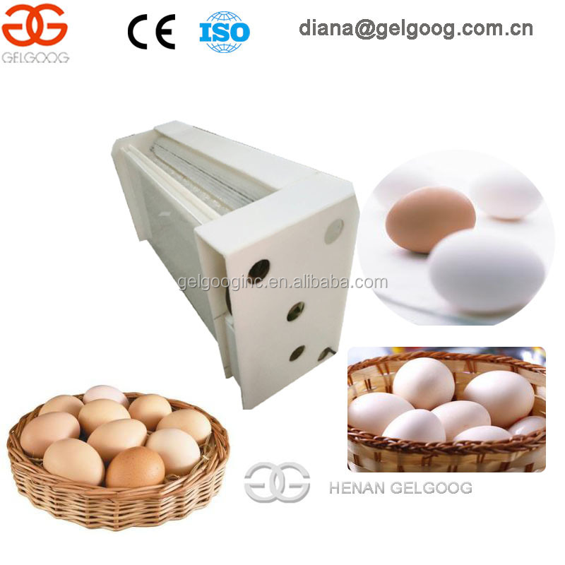 Automatic Egg Washer Machine For Sale