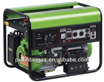 Durable small size biogas generator