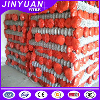Green pvc coating chain link wire mesh /galvanized chain link fence