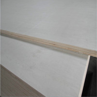 Top quality hardwood core plywood /construction plywood from china