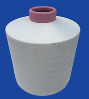 polyester DTY yarn / cation yarn HIM NIM SIM 200D/288F
