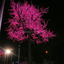 Decoration led light names of tree leaves