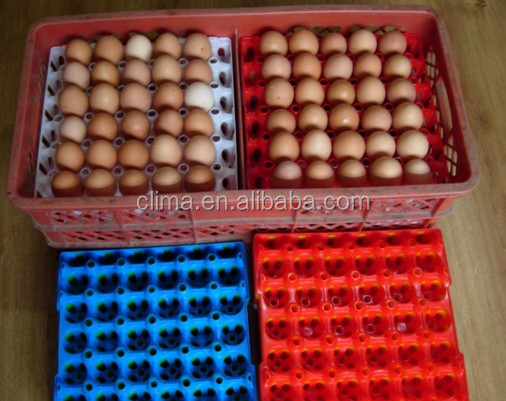 plasic egg tray for transfering use
