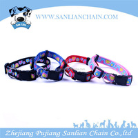 Pet products pet accessories match with ribbon dog collar and leash