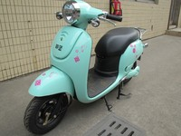 Adult cheap new model electric Classic Vespa scooter