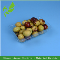 Disposable plastic tray for food/fresh meat/vegetables/fruit/cakes