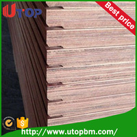 28mm container flooring plywood/ 4X8 plywood cheap plywood for sale