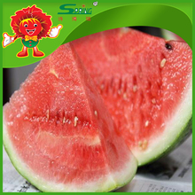 farm wholesale red yellow watermelon delicious melon in hot season