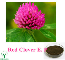 Herb Extract Powder 40% Isoflavones Red Clover Extract