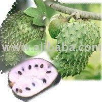 guanabana fruit fruit splat
