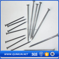 bsci approved China Factory sale directly 500pcs zinc plated common wire nail