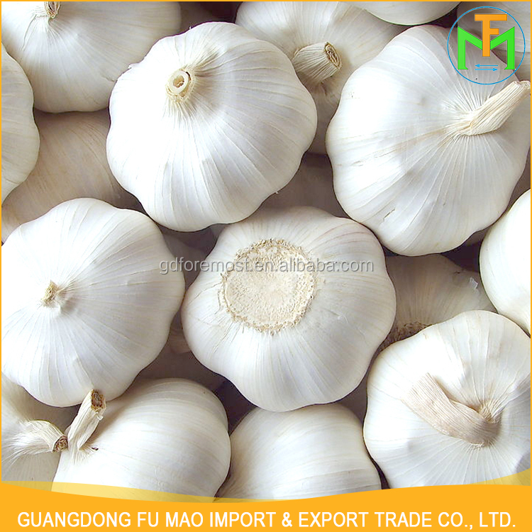 Export Best Quality 5Cm Fresh Natural Farmer Organic Normal White Shandong Garlic