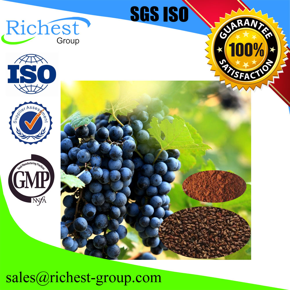 factory supply high purity Grape Seed Extract Powder,support sample