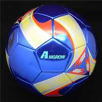 Professional sports equipments best quality soccer footballl toy