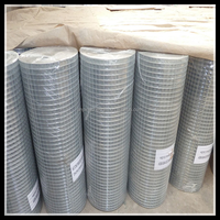 PVC coated / galvanized welded wire mesh roll