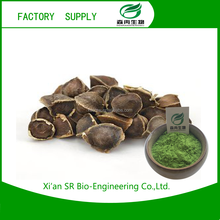 High quality import moringa P.E. With free sample