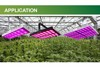 ebay best sellers hydroponics growing light system high intensity full spectrum led grow lighl builbs hydroponic supplies