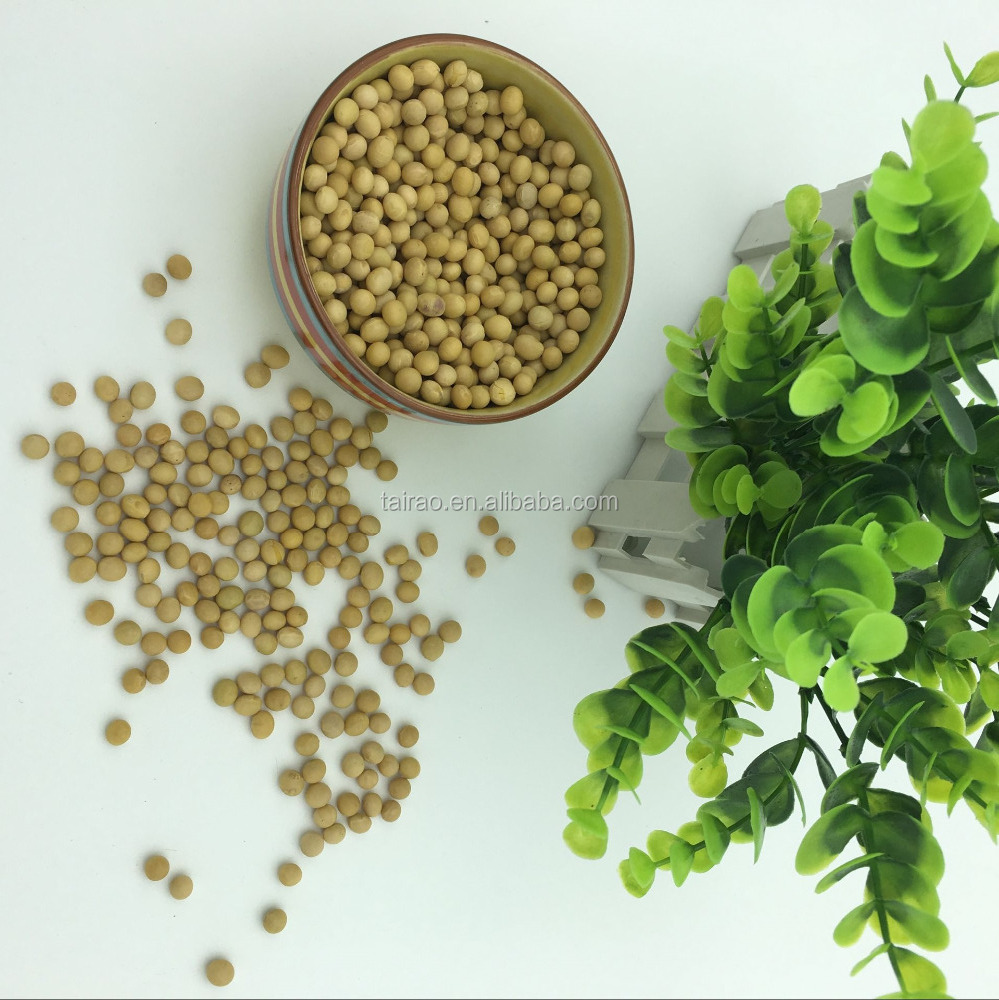 natural plant soya bean specification with good quality