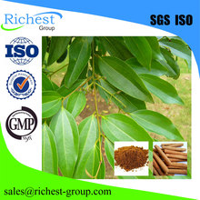 2016 best sell cinnamon bark extract
