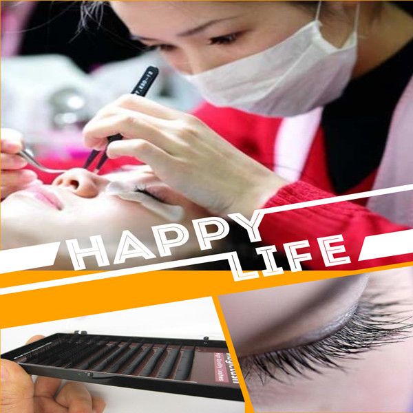 wholesale job lots 0.05mm Hs Chemical eye lashes,eyelash extensions
