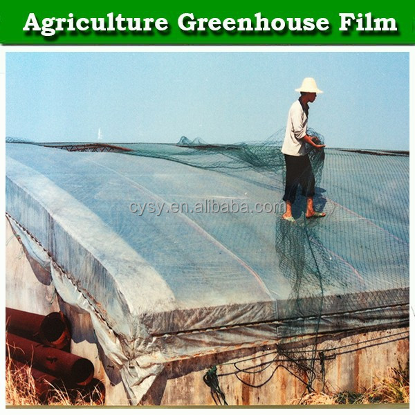 Woven PE greenhouse covering film, UV protection greenhouse plastic film, 200 micron greenhouse film