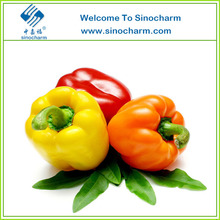 Fresh Bell Pepper Color Capsicums Red Yellow Green