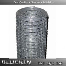 1/4 inch galvanized welded wire mesh from China top factory