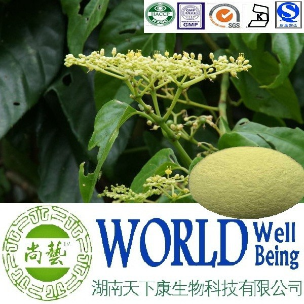 Hot sale Cissus Quadrangularis extract/Glycosides 10%/Cissus Extract/Anti-tumor plant extract