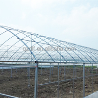 HOT SALE AGRICULTURE INDUSTRIAL PLASTIC GREENHOUSE