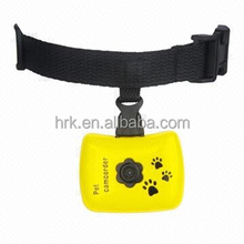 H2012 Lovely Small Sports DV Dog& Cat Camera for Sale