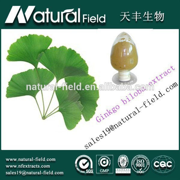 ISO&HACCP Cerfication manufacturer Best Supplier you can trust ginkgo flavone glycosides