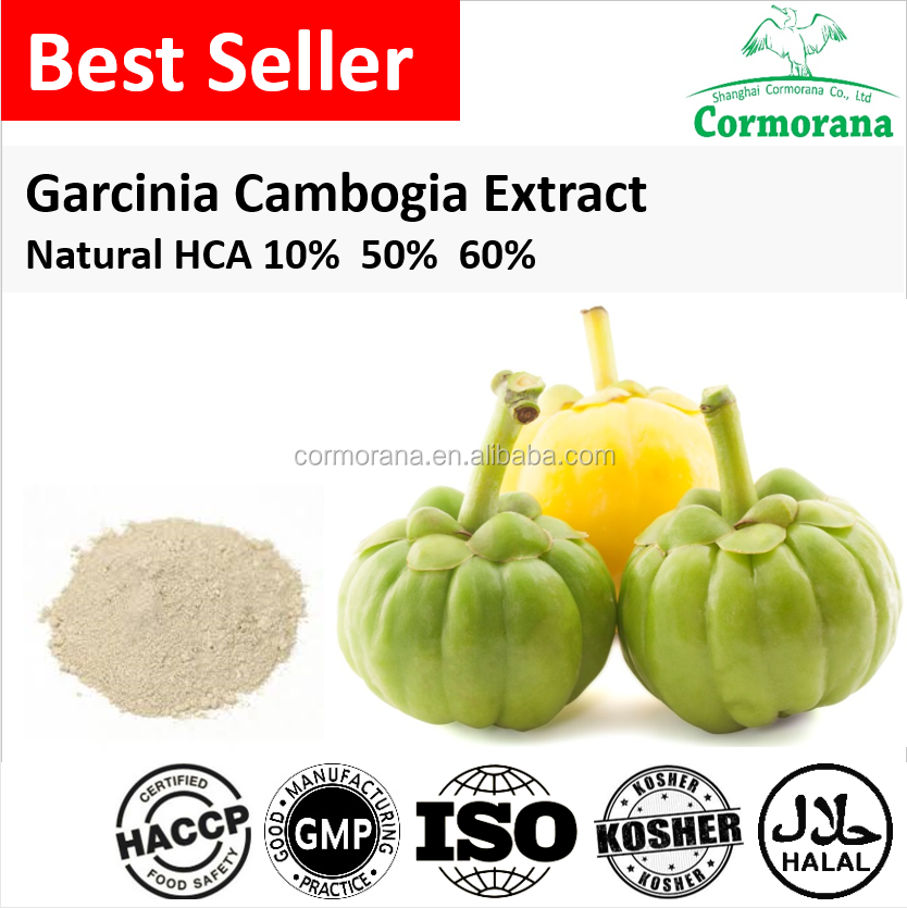 Best Selling Garcinia Cambogia Extract 10% 50% 60% 70% HCA for Weight Loss Capsules