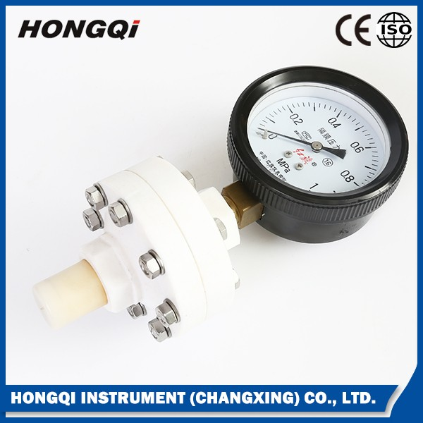 Low price vertically installed diaphragm seal pressure gauge meter