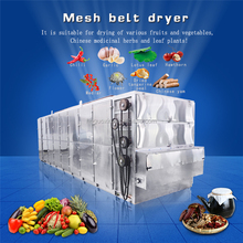 Manufacturer Moringa Leaf Cassava Food Fruit Drying Machine