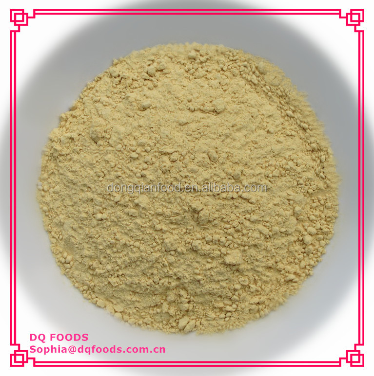 Dehydrated Ginger Powder (Free Sample)