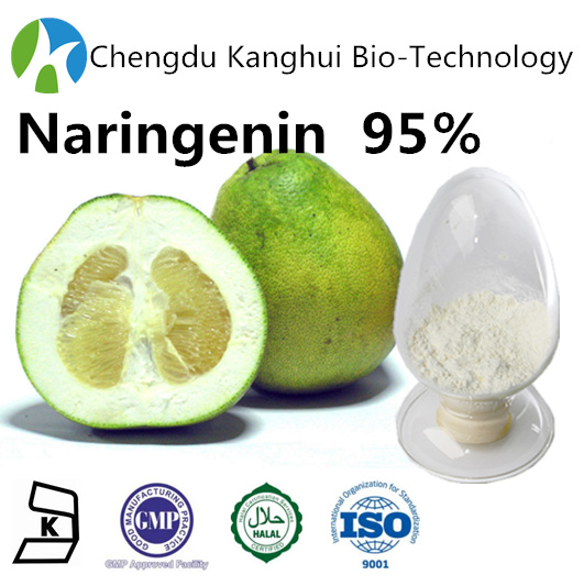 Personal Health Care for HPLC 95% Naringenin CAS480-41-1 cosmetic raw materials fruit powder