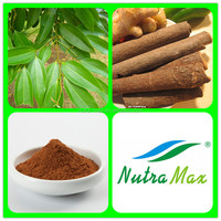 Ceylon Cinnamon Bark Powder,Ceylon Cinnamon Bark Oil,Ceylon Cinnamon Bark Extract