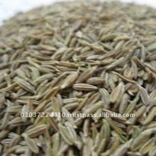 Pakistan Quality New Crop White Cumin Seed