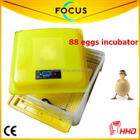 Newest design Cheap fertilized chicken eggs In Stock With 99% hatching Rate with 88 eggs