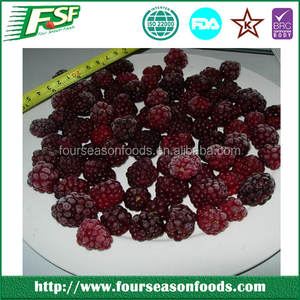 Frozen whole blackberry, china blackberry price