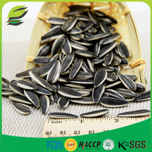 high quality sunflower seeds with shell