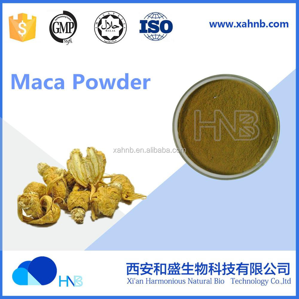 High Quality Extract Maca Herb Powder