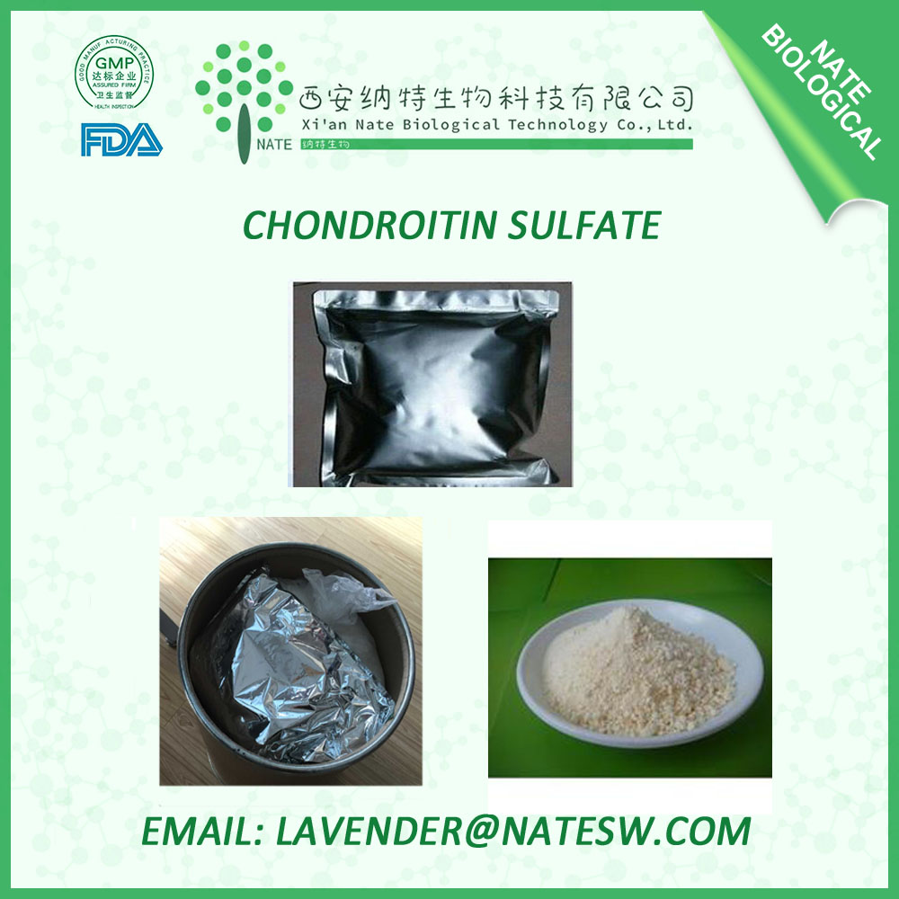Pharmaceutical grade Pure Bovine Chondroitin Sulfate for health care CAS NO. 9007-28-7 high quality & fast delivery