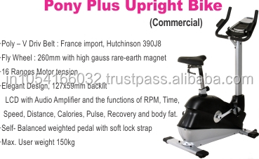 Pony Plus Commercial Upright Bike