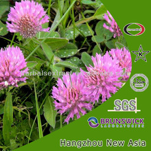 red clover extract:formononetin