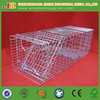 "34x10x12""galvanized collapsible animal trap cage"