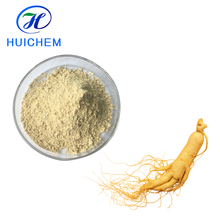 ISO Factory supply Ginseng Root Extract Powder
