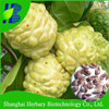 2017 Latest tropical fruit seeds noni seeds for sale